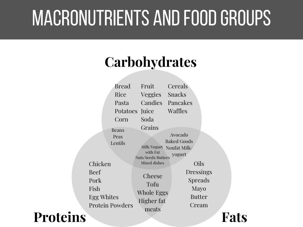 venn diagram showing the food groups and which macronutrients they provide